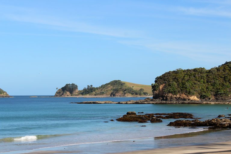 Community Support for a GE-free Coastal Marine Area in Northland